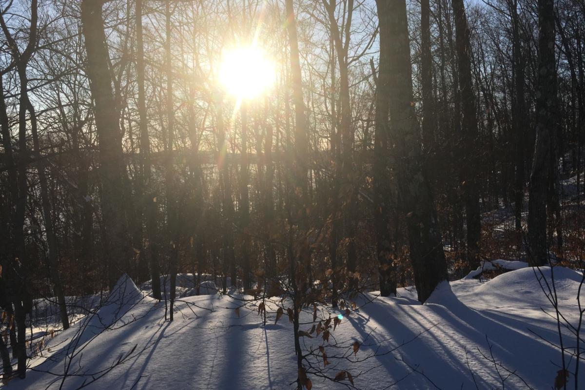 sunlightpeeking1